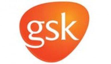 Healthcare marketing success story   GSK