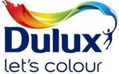 Dulux logo | Decorating marketing success stor