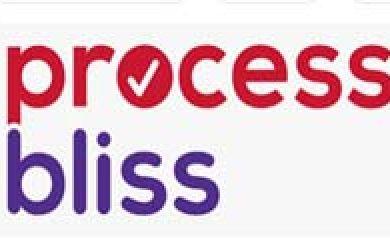 Process Bliss Software Development Success Story